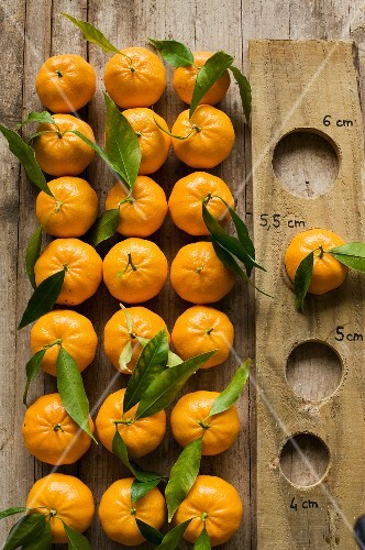Clementines with a measuring board