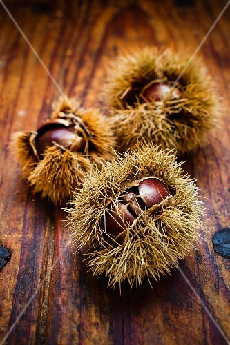 Edible chestnuts on a wooden surface