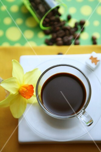 An espresso in a glass cup with a daffodil