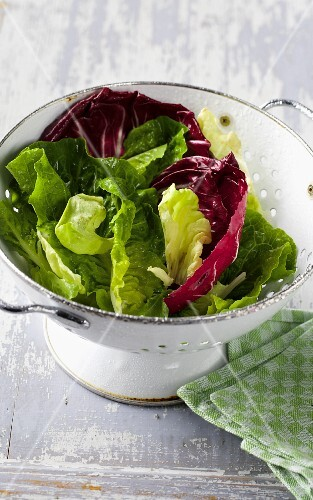Mixed leaf salad in a colander