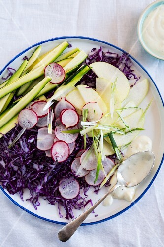 Raw vegetable salad with red cabbage, radishes and a yoghurt dressing