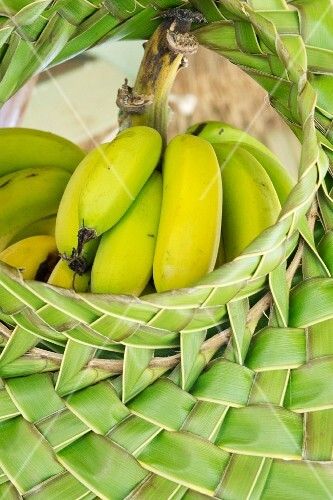 A bunch of bananas in a woven basket