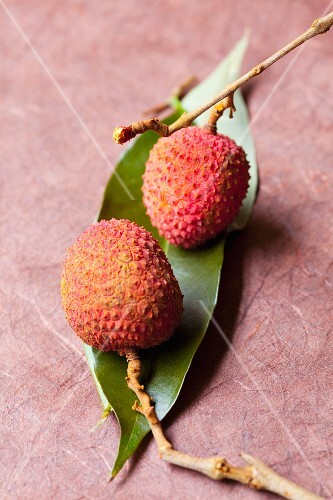 Two lychees on a leaf