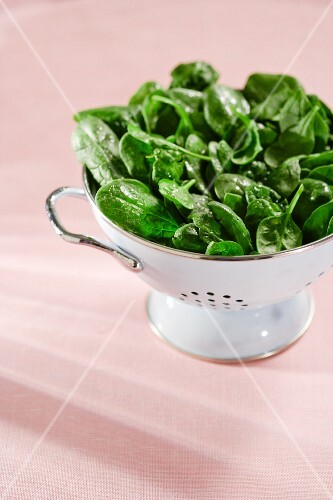 Freshly washed spinach in a colander