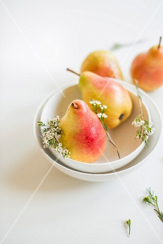 Barlett pears and white flowers in a bowl