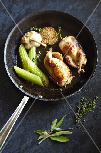 Braised spring chickens with celery, garlic, sage and thyme