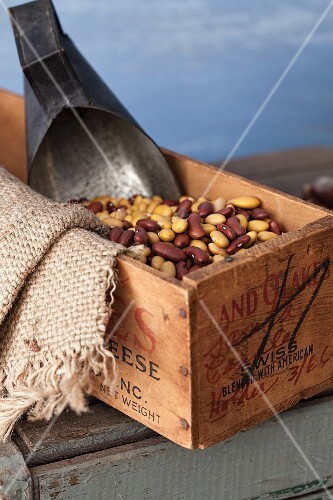 Dried beans in a wooden box with a scoop