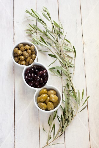 Various types of olives in bowl with an olive sprig next to it
