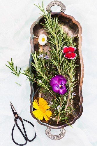 Fresh flowering rosemary sprigs and edible flowers