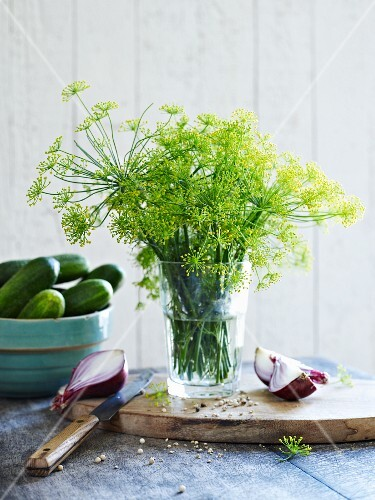 Dill flowers in a glass of water