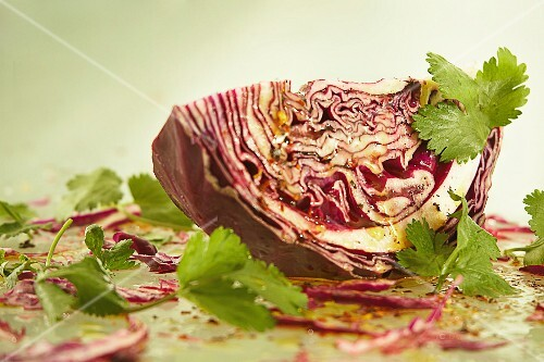 Red cabbage salad with coriander