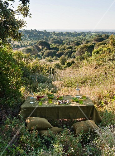 Table set in shades of green and floor cushions amongst summer hills
