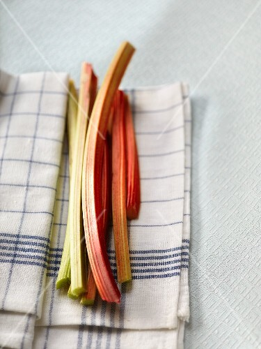 Organic rhubarb on a tea towel