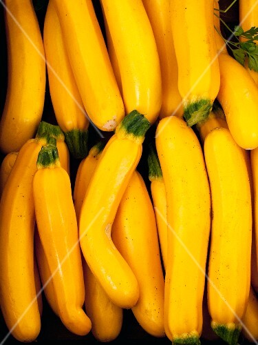 Yellow courgettes (full frame)