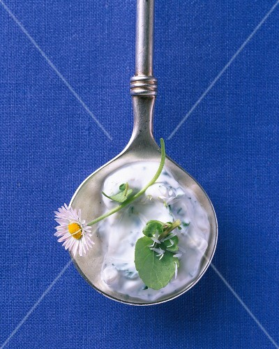 Quark dressing with wild herbs and walnuts on a silver spoon