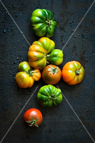 Various tomatoes on a metal surface