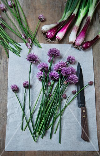 Spring onions and flowering chives