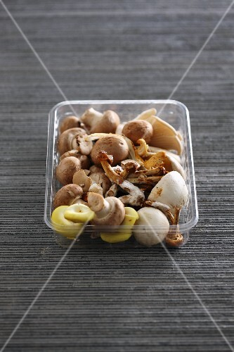 Various types of mushrooms in a plastic container