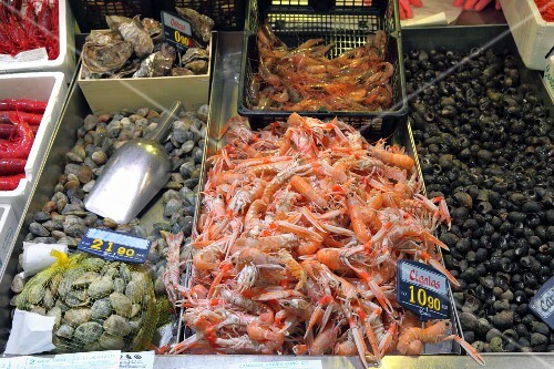 Scampi, clams, oysters and sea snails at a fish market in Bilbao, Basque Country, Spain