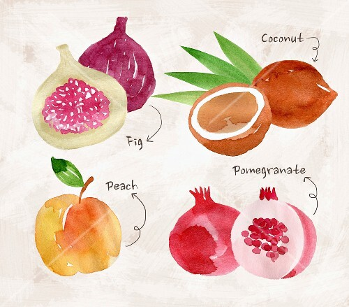 An arrangement of fruit with figs, coconut, peaches and pomegranate (illustration)