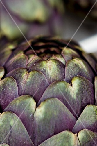 An artichoke (close-up)
