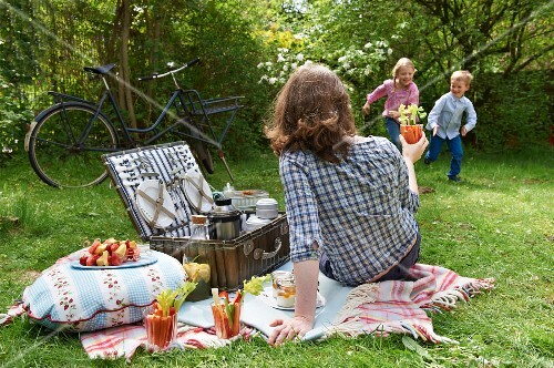 A family having a summer picnic