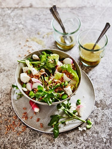 Grain salad with watercress, radishes and mozzarella