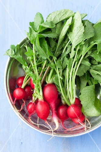 A bowl of radishes
