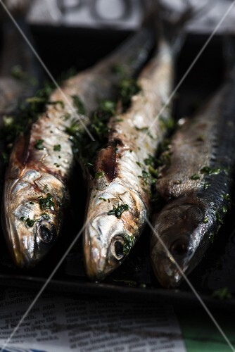 Sardines with fresh herbs