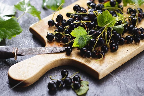Blackcurrants with leaves on a chopping board