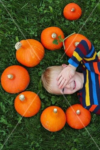 A blond boy in a field with pumpkins