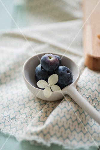 Blueberries on a white spoon decorated with a hydrangea flower