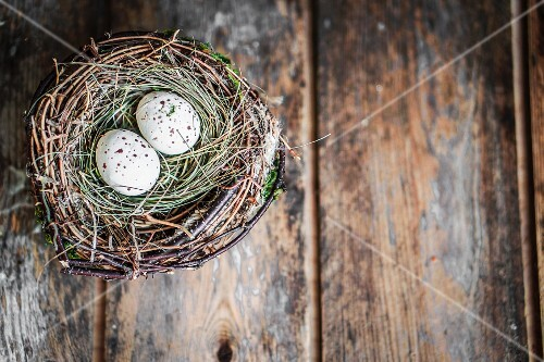 Quail's eggs in bird's nest on rustic wooden surface