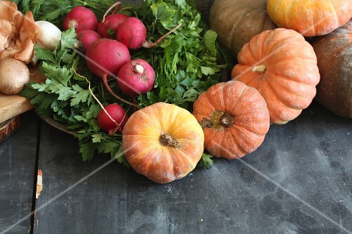 An arrangement of pumpkins, radishes and mushrooms