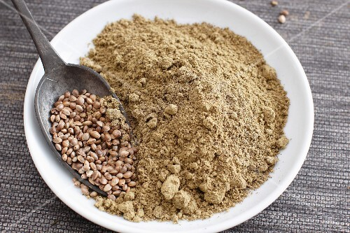A spoonful of hemp seeds and a bowl of hemp flour