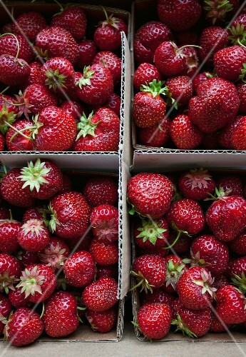 Strawberries in a cardboard container at a market