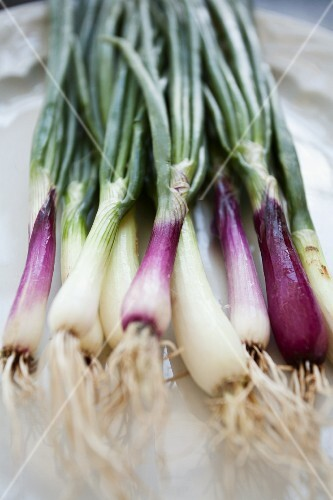 Purple and white spring onions on a white platter