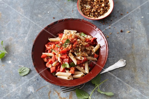 Vegetarian penne pasta with goji berries, tomatoes and mint
