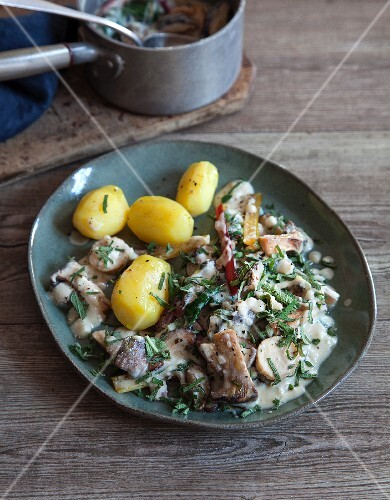 Almond mousse and mushroom ragout with chard and potatoes