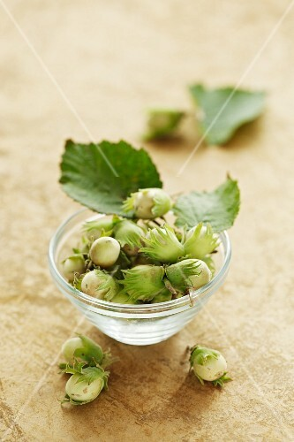 Hazelnuts with leaves in a glass bowl