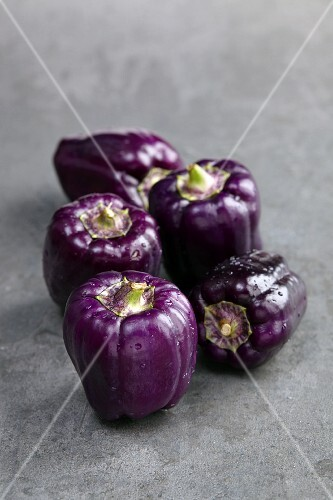 Five purple peppers on a grey stone surface