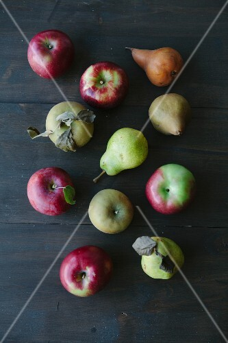 Various types of apples and pears (seen from above)