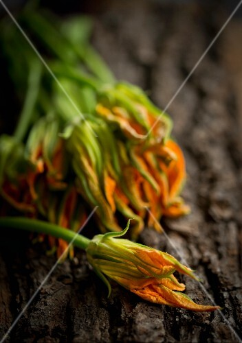 Courgette flowers on a piece of bark