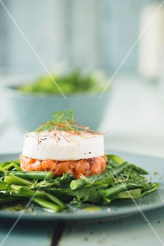 Salmon tartar with horseradish cream on green vegetables