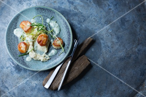 Fried scallops with purée and a herb sauce