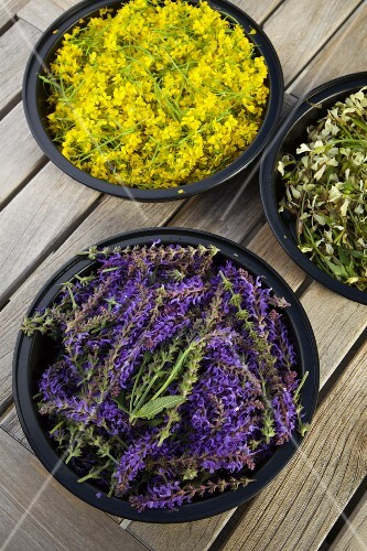 Lavender flowers in a dish