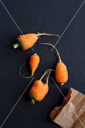 Carrots on a blue surface