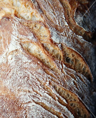 Crispy sour dough bread (close-up)