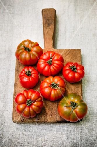 Fresh tomatoes on a wooden board