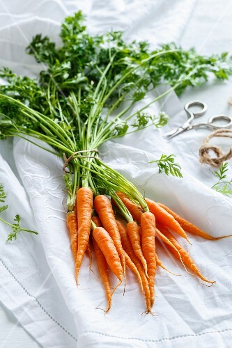 A bunch of carrots with tops